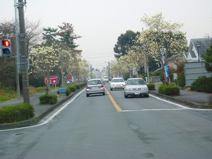 20030313